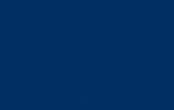 DNS Group Logo